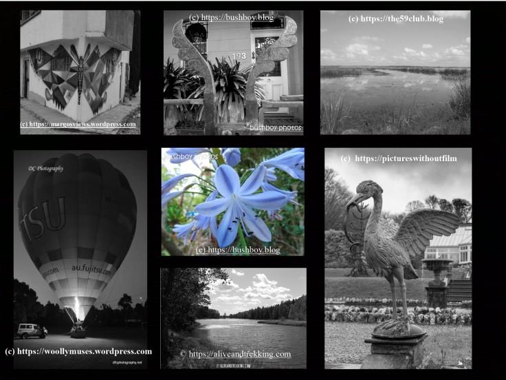 Blogger's snapshots April 1