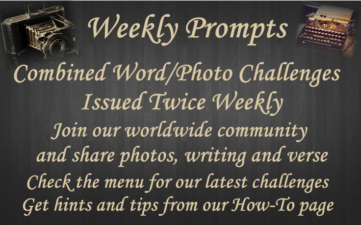 New Homepage Image Weekly Prompts 18th Jan 2020
